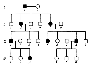 Тема КОНТРОЛЬНАЯ № Электронные пособия для студентов  Анализ родословных генеалогия